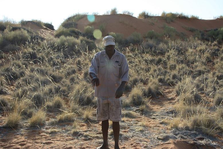 Erlebnisse in Namibia Bushman Walk Namibialiebe