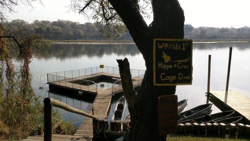 Hippo Ngepi Camp
