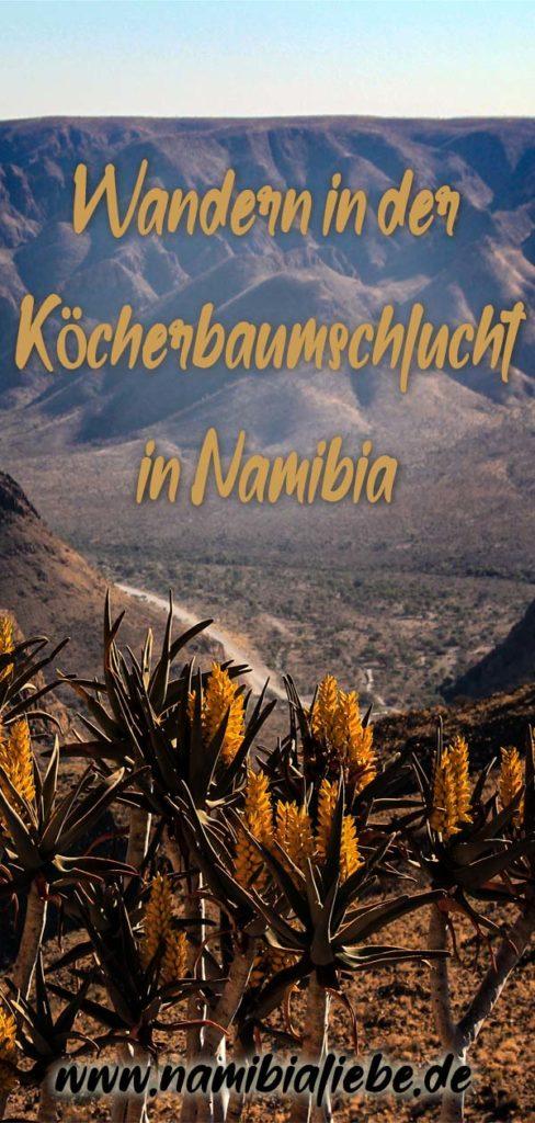 Wandern in der Köcherbaumschlucht in Namibia Namibialiebe