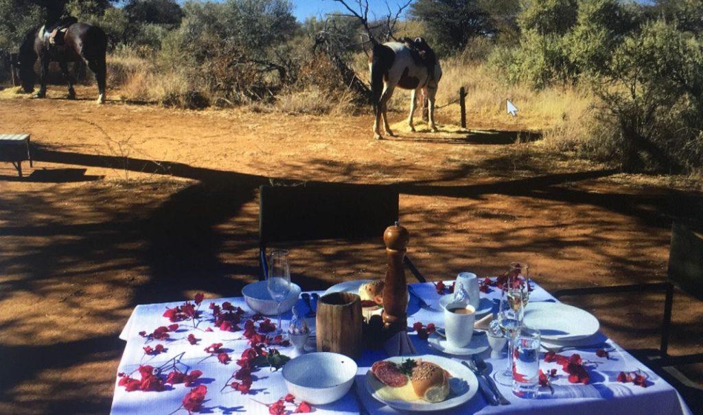 Reiten Kambaku Namibia