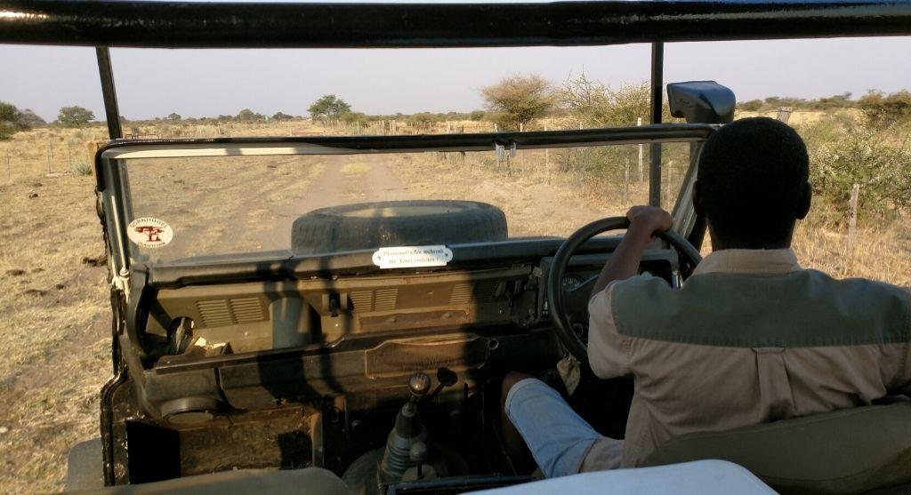 Dornhügel Namibia