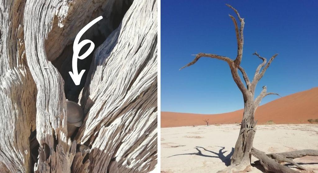Geocaching Namibia Soussusvlei