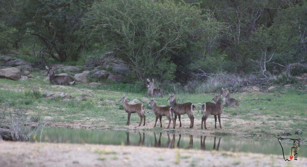 Beste Reisezeit in Namibia